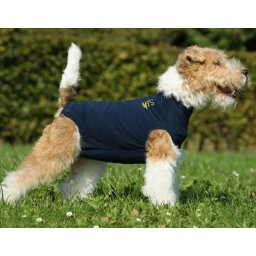 MPS medical pet suit (met plasgaatje)